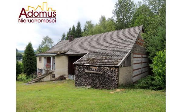 Dom z lasem / Joniny